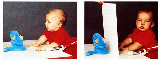 Um bebê mais novo e um mais velho respondem diferentemente à demonstração da permanência do objeto, de esconder um objeto debaixo de um cobertor ou atrás de um anteparo. Enquanto o bebê mais velho procura, o mais novo, aqui apresentado, desvia o olhar tão logo o objeto desaparece de sua vista.