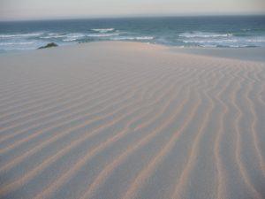 """Os padrões de """"ondinha"""" em uma duna de areia criados pelo vento ou água é um exemplo de uma estrutura emergente na natureza."""
