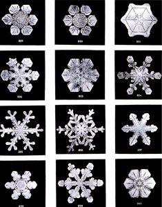 A formação de padrões simétricos e fractais complexos nos flocos de neve exemplifica a emergência em um sistema físico.